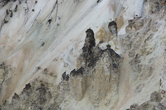"Formations in Grand Canyon of the Yellowstone • <a style=""font-size:0.8em;"" href=""http://www.flickr.com/photos/63501323@N07/30875746831/"" target=""_blank"">View on Flickr</a>"