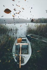 Let the leaves run free. (Bokehm0n) Tags: landscape nature vsco explore flickr earth travel folk 500px vscofilm germany water no person vehicle watercraft transportation system lake river outdoors boat reflection ship weather people recreation tree sky