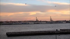 Helicopters Landing (Michael.Lee.Pics.NYC) Tags: newyork helicopters eastriver elevatedacre 55waterstreet video brooklyn sunset wallstreet heliport landing sony a7rm2 fe70300mmg