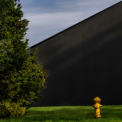 big gray :: little yellow (dotintime) Tags: gray yellow green blue white hydrant sky evergreen angle slant dotintime meganlane
