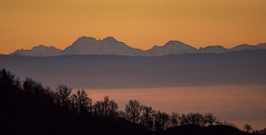Au loin, les Alpes de la Suisse (mrieffly) Tags: leverdesoleil vosgesalsace htrhin geishouse alpessuisses merdenuages brouillard crêtes canoneos50d 100400issériel