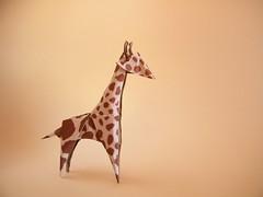 Giraffe - Yukihiko Matsuno (Rui.Roda) Tags: origami papiroflexia papierfalten girafa giraffa jirafagiraffe yukihiko matsuno