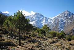 (NaomiQYTL) Tags: snow highatlas atlasmountains trekking trekatlas morocco holiday travel