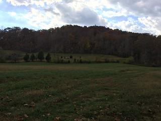 Kentucky Whitetail Hunt 2