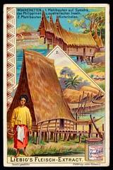 Liebig Tradecard S753 - Dwellings in Sumatra and the Philippines (cigcardpix) Tags: tradecards advertising ephemera vintage liebig chromo architecture