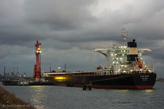 DSC03850 (De Hollena) Tags: bulkcarrier capestar cargoship hafen harbour haven holland ijmuiden lespaysbas noordholland noordzee nordholland nordsee northsea thenetherlands