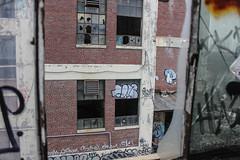 Cats (NJphotograffer) Tags: graffiti graff new jersey nj newark abandoned building urban explore cats ckd void crew lostdreamz