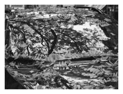 (Gene Daly) Tags: newyorkcity genedaly blackwhite olympusem5 yashinon yashicaautoyashinon55cmf18 pb300135