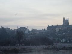 Skein (Phil Gayton) Tags: skein canada goose brantacanadensis river dart bridgetown water meadow totnes devon uk frost mist