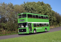 NBC M&D 5385 Volvo Ailsa - Alexander body (Copy) (focus- transport) Tags: nbc national bus company bristol vr re ecw eastern coachworks mcw metrobus leyland leopard marshall volvo ailsa olympian united trent ribble pmt northern midland red maidstone district eyms md crosville atlantean