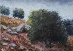 La Cueva del Mudo, Cadenas; Torredelcampo, Jan (3P) (Juan Al. Montoro) Tags: cuevadelmudo cadenas torredelcampo fuertedelrey jan juanalmontoro