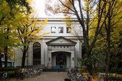 Facade of Fukagawa Library () (christinayan01) Tags: building architecture postmodern perspective tokyo japan library