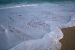 (S.askins15) Tags: waves water break ocean beach mexico cabo baja blue