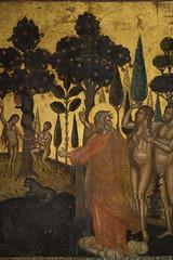 Syracuse (ab629) Tags: syracuse ortigia sicilia sicily genesis gardenofeden