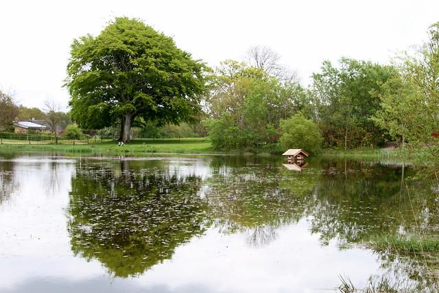 Spejl sø, Nørager