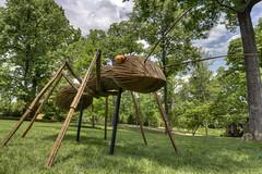 Ant, David Rogers Big Bugs, Cheekwood Botanical Garden, Nashville, Tennessee (Chuck Sutherland) Tags: garden tn nashville tennessee davidson botanicalgarden cheekwood artporn davidsoncounty cheekwoodbotanicalgarden cheekwoodbotanicalgardenandmuseumofart rartporn