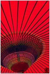 (Damien Douxchamps) Tags: japan umbrella japanese  kansai japon shiga japonais  parapluie kinki    kaizuosaki