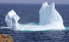 Iceberg near Cape Bonavista Light (gourab66) Tags: travel canada nature canon newfoundland landscape iceberg bonavista waterscape naturelovers canon24105mmf4l canon60d