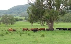 925 Naughtons Gap Rd, Bentley NSW