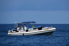 snorkel trip (BarryFackler) Tags: ocean sea building water outdoors hawaii polynesia marine pacific horizon vessel snorkeling pacificocean tropical bigisland nautical watersports swimmers watercraft kona 2014 seaquest honaunau konacoast snorkelers snorkelboat hawaiicounty southkona inflatableboat hawaiiisland honaunaubay westhawaii rigidinflatable seaquel barryfackler barronfackler yamahaoutboardmotor solas80