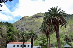 2014 05 26 197 Northwest Tour (Mark Baker.) Tags: mountain west portugal island photo spring europe baker tour view mark north may photograph views vicente sao madeira 2014 picsmark