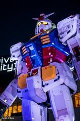DSC08871 (arieschou) Tags: japan night tokyo   odaiba    nex6
