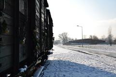 Auschwitz (002)