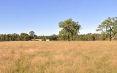 152 Webbers Creek Rd, Paterson NSW