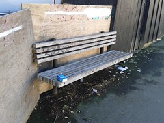 Bench on Constable Street in Wellington (4nitsirk) Tags: bench wellington