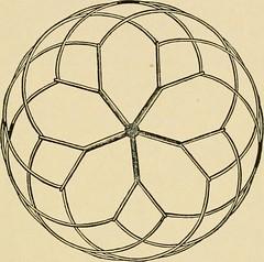 Anglų lietuvių žodynas. Žodis circular graph reiškia apskrita grafika lietuviškai.