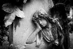 Infinite Sadness (drugodragodiego) Tags: blackandwhite bw italy cemetery angel pentax angelo lombardia biancoenero k3 bagolino vallesabbia provinciadibrescia pentaxda1650mm smcpentaxda1650mmf28edalifsdm valledelcaffaro pentaxiani cimiterovecchio pentaxk3