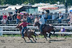 DSC_0138-1 (Glenn Fullum) Tags: nikon barrels hose chevaux baril gymkhana d5200