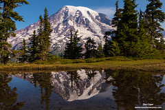 Mount Rainier Reflection (Don Geyer) Tags: morning wild summer usa mountain lake mountains nature water ecology pool landscape outside outdoors volcano landscapes us washington pond scenery view unitedstates natural outdoor lakes scenic peak glacier pools views mountrainier glaciers vista wa backcountry environment mornings summertime vistas wilderness peaks ponds volcanic scenics summers ecosystem volcanos cascaderange environments wilds summertimes ecosystems uncultivated mountrainierreflectedinahighalpinetarninmountrainiern mountrainierreflectedinahighalpinetarninmountrainiernationalpark