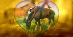 Something New Cowgirl4_001.jpg (mooshieu) Tags: horse apple pose western wildwest prop gacha somethingnew