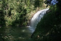 Pepina Falls (1) copy (sixdos) Tags: water waterfall australia waterfalls queensland waterway freshwater tropicalnorthqueensland athertontablelands farnorthqueensland pepinafalls middlebrookcreek