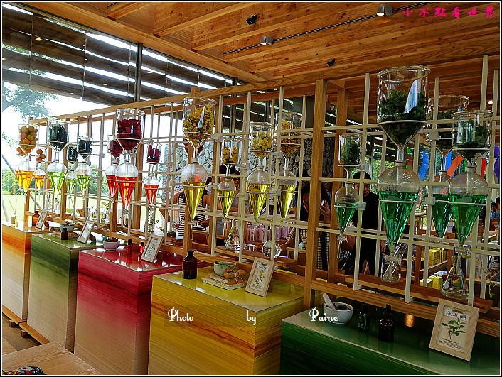 濟州島innisfree館 綠茶博物館 (28).JPG
