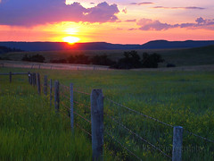Wyoming welcome... (VFR Photography) Tags: morning cloud reflection alva tourism nature grass silhouette clouds blackhills sunrise fence reflections shower dawn scenery ray glow natural scenic silhouettes fences western barbedwire glowing fencing grasses rays wyoming showers barbwire predawn risingsun daybreak wy fenceline crookcounty prequel bear
