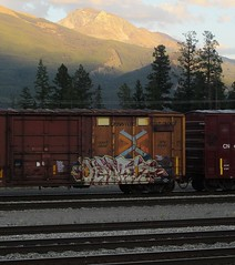 KAMIT (YardJock) Tags: railroad graffiti spraypaint boxcar freighttrain rollingstock railbox tbv benching kamit paintedsteel benchreport