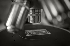 Nikon Microscope (frntprchprss) Tags: blackandwhite nikon geology microscope mineralogy jamesgehrt