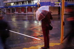 braving winter (vogon M) Tags: new winter rain zealand wellington catchup