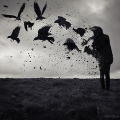 Change (Self Portrait) (lucy jane purrington art) Tags: blackandwhite black bird monochrome birds wales mono surrealism magic gothic goth dream surreal surrealist nightmare crow crows raven caerphilly conceptphotos