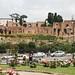 Rose garden at Circus Maximus