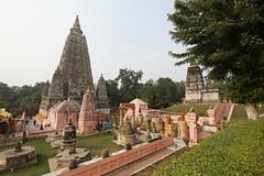 India_0136