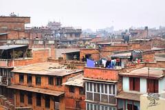 India_0689