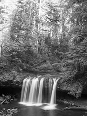 img3716-med (matthauer) Tags: 120 film oregon waterfall bronica asteria buttecreek bronicaetrsi scottsmill buttecreekfalls