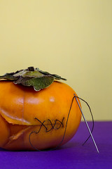 Persimmon (KellarW) Tags: thinskinned handlewithcare thread sew macromonday thin needle caring colorful stitches persimmons liyounglee booboo green precision repair ouchy purple halloween wound skin macromondays orange healing keptinstitches openwound repaired fixed flickrfriday stitch repairing heal orangeandpurple sewing persimmon yellow thinskin fix