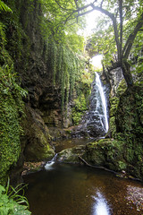(Chris B70D) Tags: scotland exploring nature landscape landmarks sunday weekend world st cyrus den finella waterfall tall amazing height hidden treasure secret place pool rock vines green trees utopia mirage paradise water arch tunnel