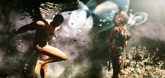 Angel Dust (lndya and Leeaker) Tags: cosmopolitan angel dress secondlife sl fantastic decor 3d virtual cloud mysterious agapee persefona elegance eleganceboutique