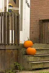 Two Steps (rumimume) Tags: potd rumimume 2016 niagara ontario canada photo canon 550d t2i sigma orange pumpkin porch steps outdoor halloween fall autumn october