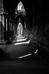 light (pamelaadam) Tags: bw geolat54488344 geo:lon=0607894 whitby engerlandshire whitbyabbey abbey kirk building faith spirituality august summer 2016 holiday2016 people lurkation digital fotolog thebiggestgroup